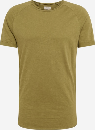 Redefined Rebel T-Shirt 'Kas' en olive, Vue avec produit