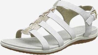 GEOX Sandale in grau / weiß, Produktansicht