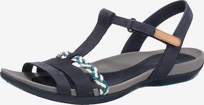 CLARKS Sandalen met riem 'Tealite grace' in de kleur Navy / Turquoise / Parelwit, Productweergave