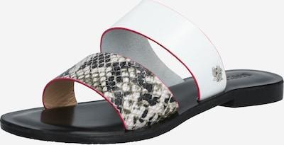 MEXX Slipper 'Enea' in grau / weiß, Produktansicht
