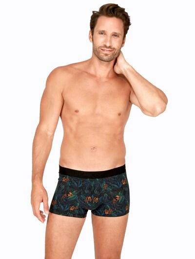 HOM Boxershorts in mischfarben, Modelansicht