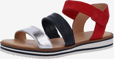 ARA Sandalen in navy / rot / silber, Produktansicht