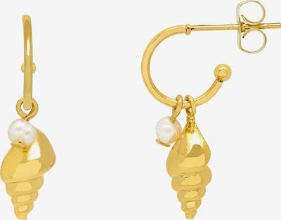 Estella Bartlett Ohrringe 'Shell & Pearl' in gold, Produktansicht