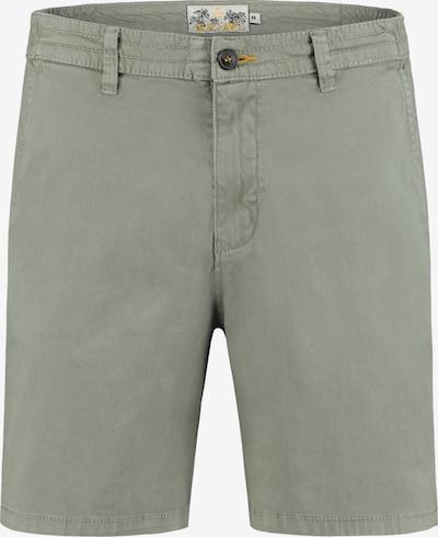 Shiwi Chino kalhoty - khaki, Produkt