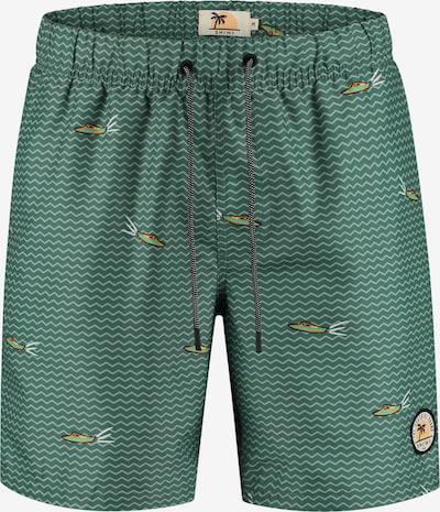 Pantaloncini da bagno Shiwi di colore verde chiaro, Visualizzazione prodotti