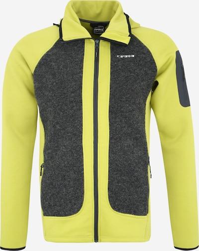 ICEPEAK Sport-Sweatjacken 'DANVERS' in grau / hellgrün, Produktansicht