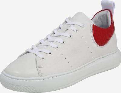 piros / fehér PAVEMENT Rövid szárú edzőcipők 'Elvi', Termék nézet