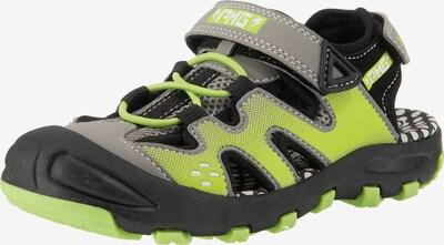 PRIMIGI Sandale in grau / grün / schwarz, Produktansicht