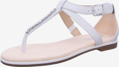 CLARKS Teenslipper in de kleur Wit, Productweergave