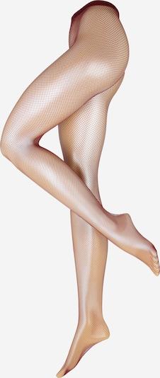 Swedish Stockings Collants 'Liv' en bordeaux, Vue avec produit