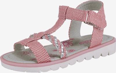 LICO Sandale 'Greta V' in pink / silber / weiß, Produktansicht