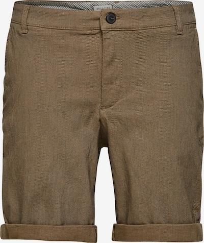 SELECTED HOMME Bio-Baumwolle Shorts in braun, Produktansicht