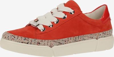 ARA Sneaker in mischfarben / rot, Produktansicht