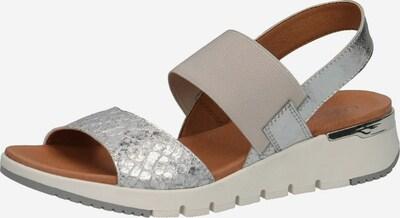 CAPRICE Sandale in grau / silbergrau / silber, Produktansicht