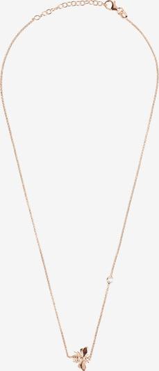 Latelita Kette in rosegold, Produktansicht
