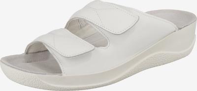 BECK Pantolette 'Hanni' in weiß, Produktansicht