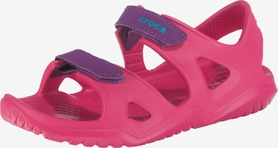 Crocs Sandale 'Swiftwater River' in dunkellila / pink, Produktansicht