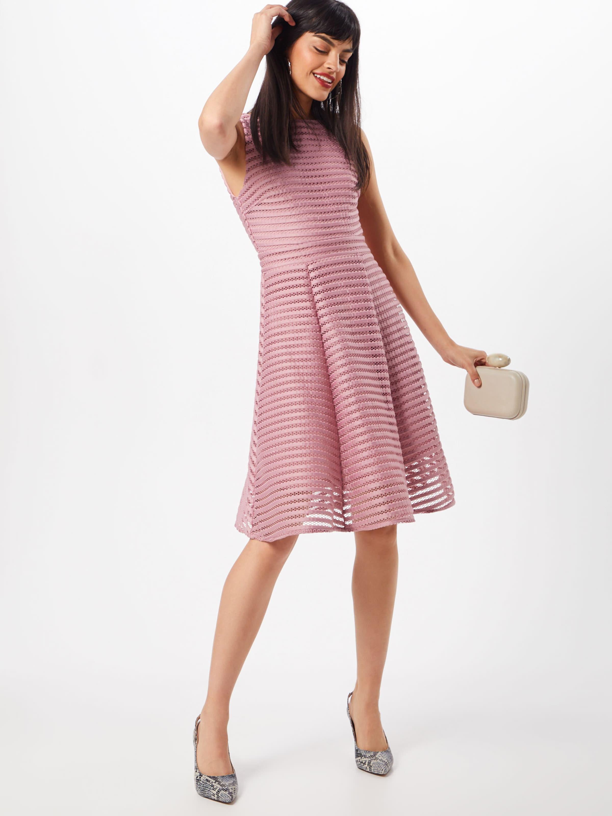 'charlotte In Rosé Kleid Dress' Tfnc QthBrdCxs