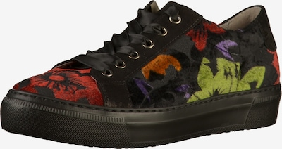 GABOR Sneaker in apfel / helllila / orange / rot / schwarz: Frontalansicht