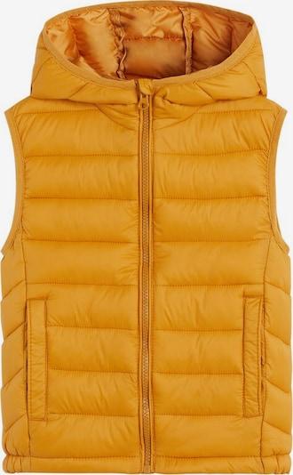 MANGO KIDS Bodywarmer 'unicovp6' in de kleur Mosterd, Productweergave