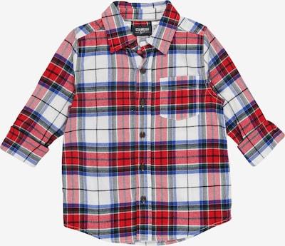 OshKosh Hemd in rot / weiß, Produktansicht