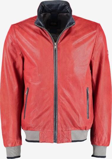 DNR Jackets Lederblouson in rot, Produktansicht