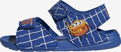 ADIDAS PERFORMANCE Sandale 'AltaSwim' in blau / dunkelorange / weiß, Produktansicht