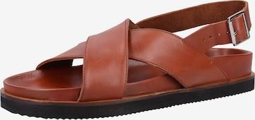 Sandales KICKERS en marron