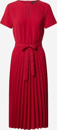 Dorothy Perkins Kleid in rot, Produktansicht