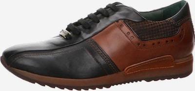 Galizio Torresi Schnürschuh in braun / schwarz, Produktansicht