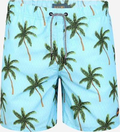 Shiwi Badeshorts 'palms' in hellblau / grün: Frontalansicht