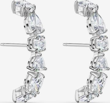 Swarovski Earrings 'Tennis' in Silver