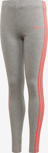 ADIDAS PERFORMANCE Sporthose in grau: Frontalansicht