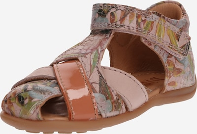 BISGAARD Sandales en marron / vert clair / rose, Vue avec produit