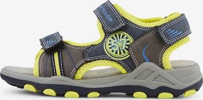 TOM TAILOR Sandale in neongelb / dunkelgrau, Produktansicht