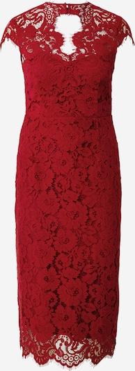 IVY & OAK Kleid in rostrot, Produktansicht