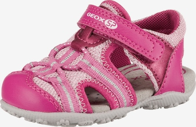 GEOX Sandale 'Roxanne' in pink / rosa: Frontalansicht