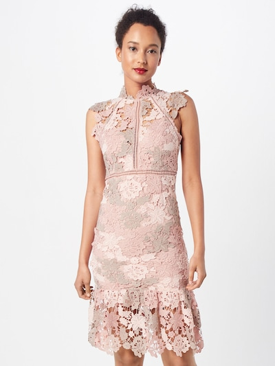 Bardot 'DANI LACE DRESS' in rosa, Modelansicht