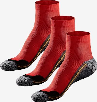 CHIEMSEE Hiking-Kurzsockenvon (3 Paar) in rot / schwarzmeliert, Produktansicht