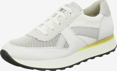 Paul Green Sneaker in hellgrau / weiß, Produktansicht