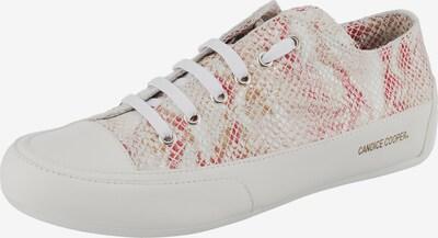 Candice Cooper Sneaker in mischfarben / weiß, Produktansicht