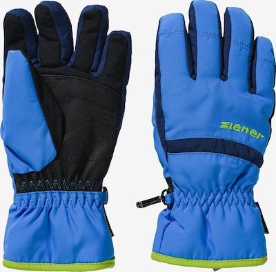 ZIENER Skihandschuhe 'Lejano AS' in blau / navy / schwarz: Frontalansicht