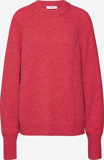 EDITED Sweter 'Lane' w kolorze pitajam, Podgląd produktu