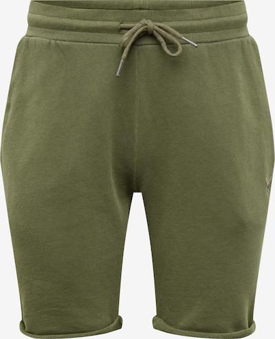 distortedpeople Spodnie 'Classic' w kolorze oliwkowym, Podgląd produktu