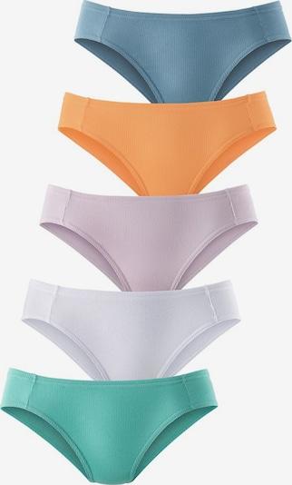 PETITE FLEUR Bikinislip (5 Stck.) in taubenblau / pastellblau / pastelllila / mandarine / weiß, Produktansicht