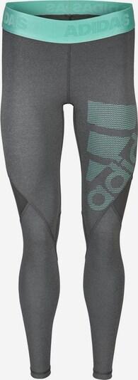 ADIDAS PERFORMANCE Sportbroek 'Alphaskin' in de kleur Turquoise / Stone grey, Productweergave