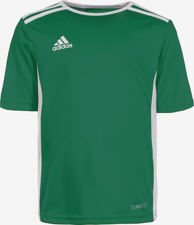 ADIDAS PERFORMANCE Fußballtrikot 'Entrada 18' in grün / weiß, Produktansicht