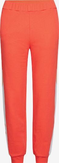 Calvin Klein Sweathose in orange / weiß, Produktansicht