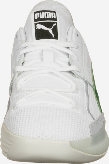 PUMA Schuhe ' Clyde Hardwood ' in grau grün weiß | ABOUT YOU