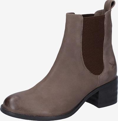 SANSIBAR Chelsea Boots en beige foncé / marron châtaigne, Vue avec produit